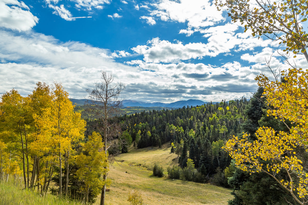 The Enchanted Circle Scenic Byway is a great way to take in spectacular fall color in Northern New Mexico.