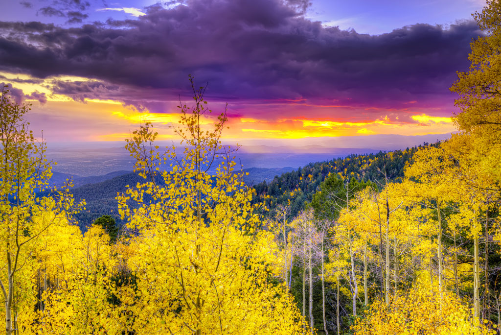 Gorgeous fall color is a must-see in Northern New Mexico.